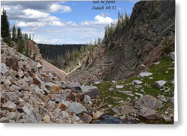 Majestic View Greeting Card by Kathy Junkins