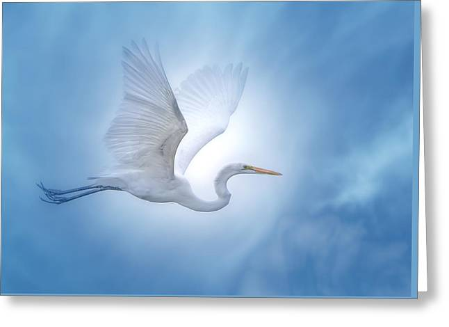 Recently Sold -  - Angel Blues Greeting Cards - Majesty of the Skies Greeting Card by Mark Andrew Thomas