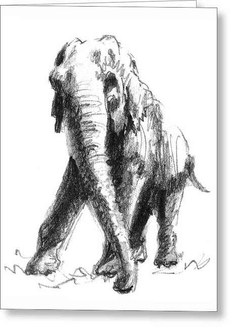 Wild Life Drawings Greeting Cards - Majesty Greeting Card by Sarah Parks