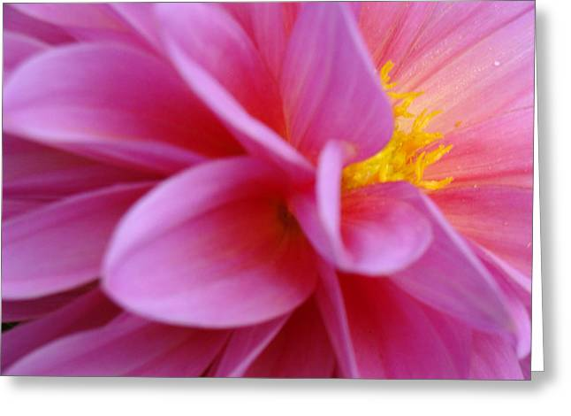 Empowerment Greeting Cards - Make A Joyful Noise Greeting Card by Ira Shander