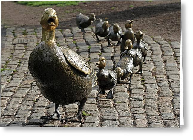 Ducklings Greeting Cards - Make Way for Ducklings Greeting Card by Juergen Roth