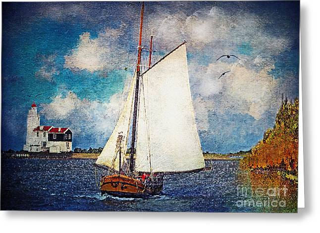 Lianne_schneider Greeting Cards - Making for Safe Harbor Greeting Card by Lianne Schneider