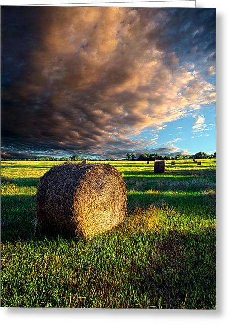 Hay Bales Photographs Greeting Cards - Making Hay Greeting Card by Phil Koch