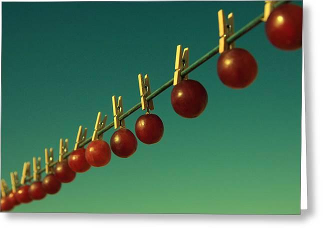 Purple Grapes Greeting Cards - Making raisins. Greeting Card by Beata  Czyzowska Young