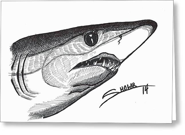 Mako Shark Greeting Cards - Mako Greeting Card by Alex Sholar