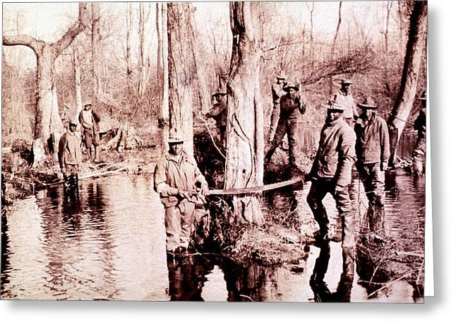 Human Tree Greeting Cards - Malaria control operations, 1910s Greeting Card by Science Photo Library