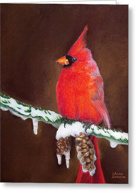 Pine Cones Pastels Greeting Cards - Male Cardinal Greeting Card by Adam Johnson