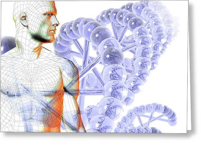 Male Figure With Dna Greeting Card by Carol & Mike Werner