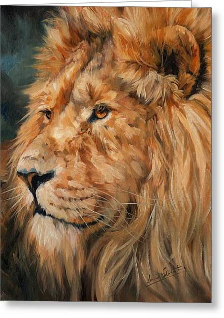Lions Greeting Cards - Male Lion Greeting Card by David Stribbling