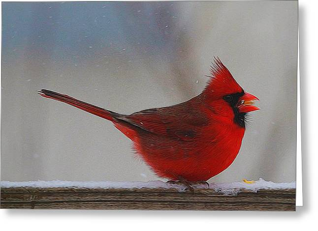 Male Northern Cardinal Greeting Cards - Male Northern Cardinal In Winter Greeting Card by Dan Sproul