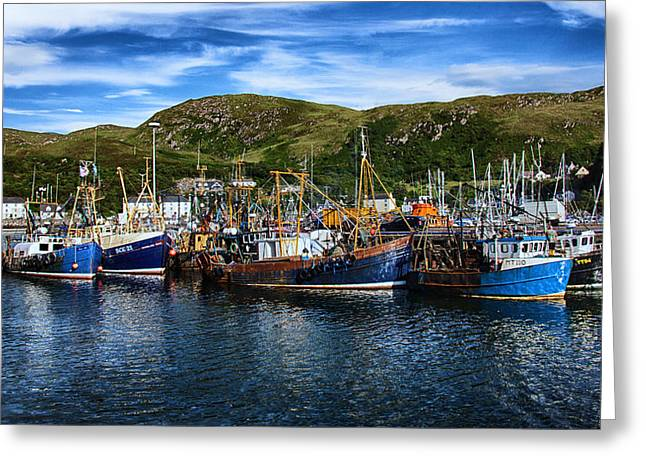 Tradional Greeting Cards - Mallaig Harbour in Scotland Greeting Card by Zoe Ferrie