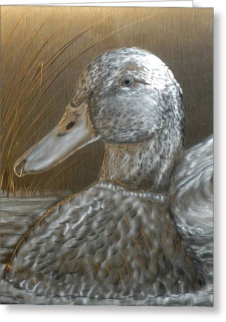 Water Fowl Mixed Media Greeting Cards - Mallard Duck Greeting Card by Hank  Bufkin