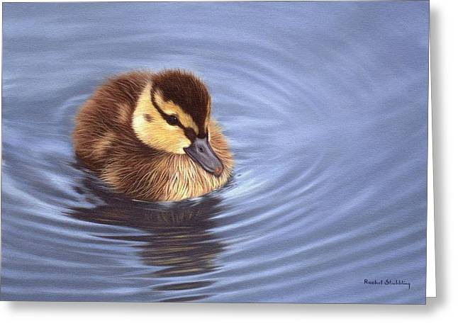 Mallard Paintings Greeting Cards - Mallard Duckling Painting Greeting Card by Rachel Stribbling