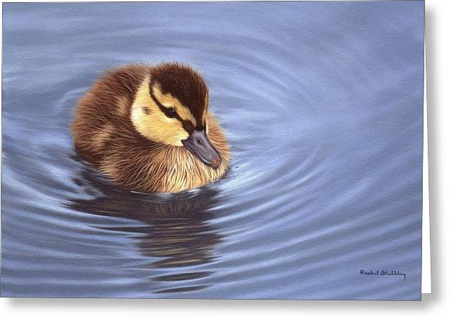 Duck Art Greeting Cards - Mallard Duckling Painting Greeting Card by Rachel Stribbling