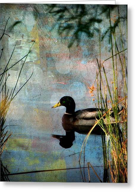 Water Fowl Greeting Cards - Mallard Greeting Card by Lisa S Baker