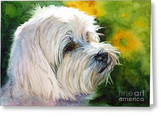 White Dogs Greeting Cards - Maltese Greeting Card by Bonnie Rinier
