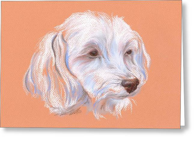 Small Dog Pastels Greeting Cards - Maltipoo Portrait Greeting Card by MM Anderson
