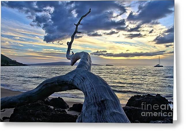 Djphoto Greeting Cards - Maluaka Beach Sunset Greeting Card by DJ Florek