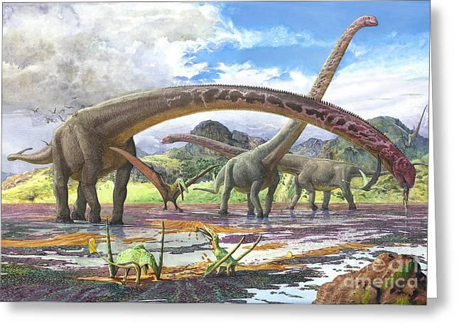 Zoology Digital Art Greeting Cards - Mamenchisaurus Feeding On Brown Algae Greeting Card by Sergey Krasovskiy