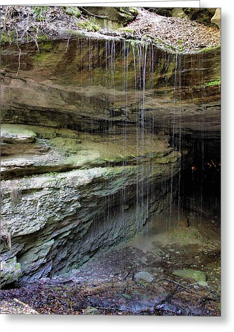 Tree Roots Photographs Greeting Cards - Mammoth Cave Entrance Greeting Card by Kristin Elmquist