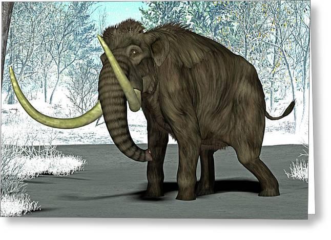 Mammoth Greeting Card by Friedrich Saurer