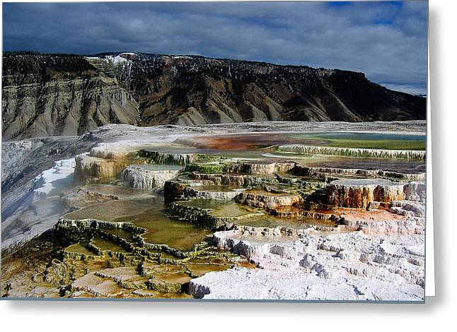 Mammoth Hot Springs Greeting Card by Robert Woodward