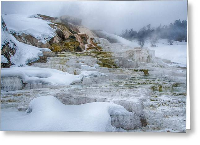 Mammoth Terrace Greeting Cards - Mammoth Hot Springs Terraces in Winter Greeting Card by Alan Toepfer