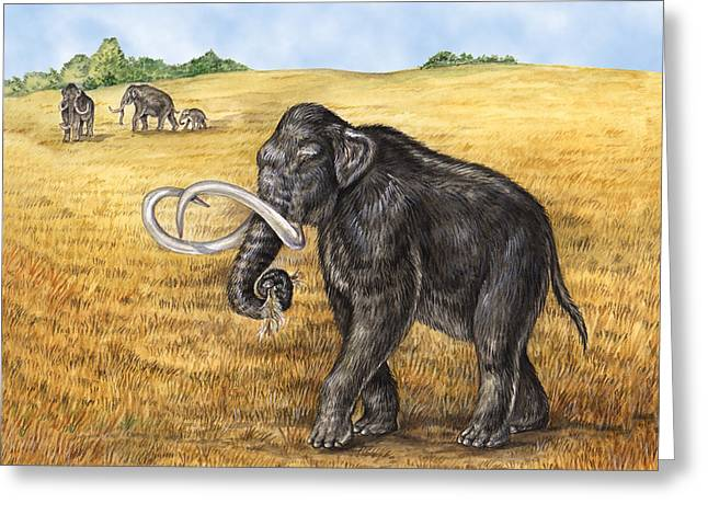 Mammoth Greeting Card by Laurie OKeefe