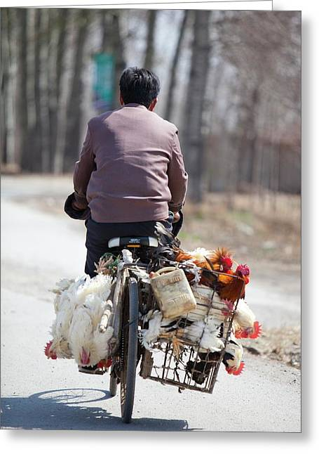 Man And Chickens On A Bike Greeting Card by Ashley Cooper