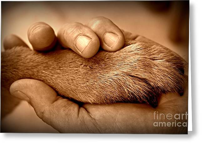 Forgiveness Greeting Cards - Man and Dog Greeting Card by Clare Bevan