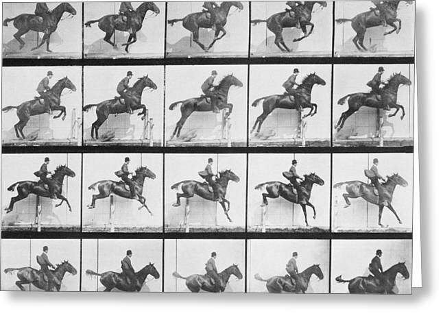Equestrian Prints Photographs Greeting Cards - Man and horse jumping a fence Greeting Card by Eadweard Muybridge