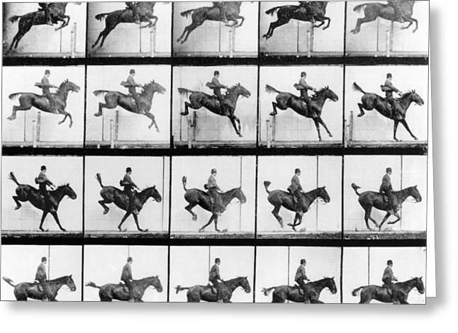 Sequence Greeting Cards - Man and Horse jumping Greeting Card by Eadweard Muybridge