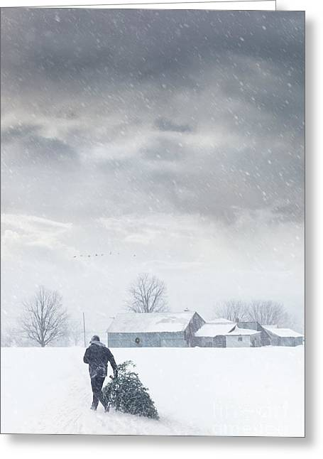 Recently Sold -  - Concept Photographs Greeting Cards - Man carrying tree for Christmas Greeting Card by Sandra Cunningham