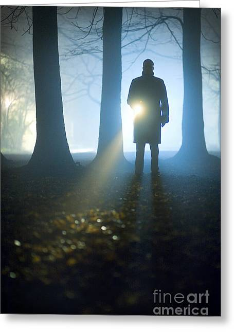 Police Officer Greeting Cards - Man Searching With A Flashlight Or Torch Greeting Card by Lee Avison