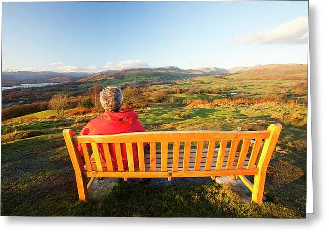 Man Sitting On A Memorial Seat Greeting Card by Ashley Cooper