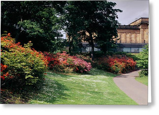 Art Of Building Greeting Cards - Man Standing In A Formal Garden Near An Greeting Card by Panoramic Images