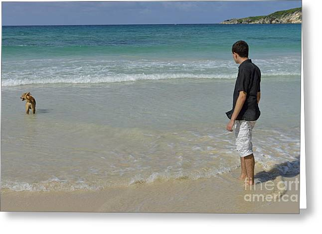 Real People Greeting Cards - Man with dog contemplating ocean Greeting Card by Sami Sarkis