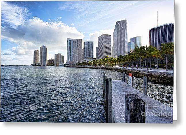 Miami Pyrography Greeting Cards - Manatee Area Bayside Miami Greeting Card by Eyzen M Kim