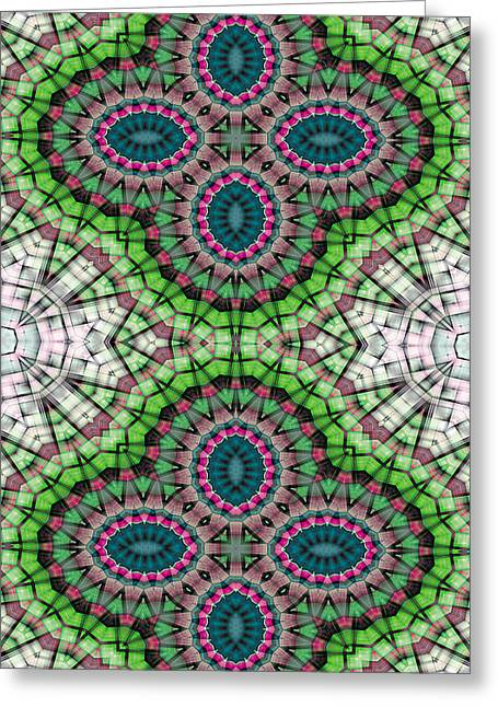 Cosmos Greeting Cards - Mandala 111 for iPhone Single Greeting Card by Terry Reynoldson
