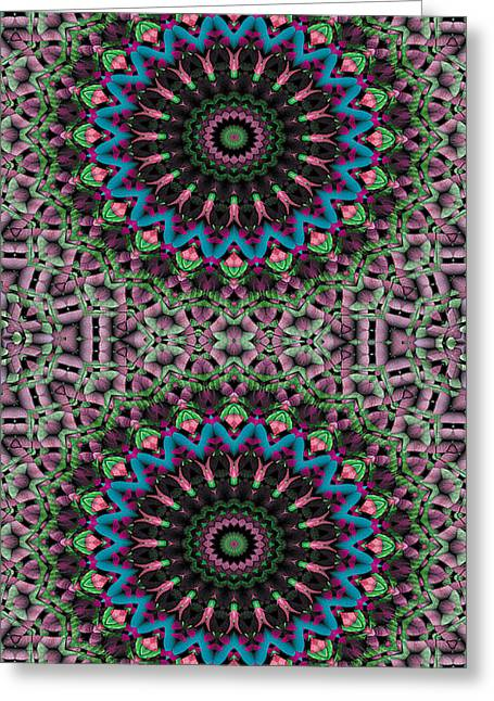 Iphone Greeting Cards - Mandala 33 for iPhone Double Greeting Card by Terry Reynoldson