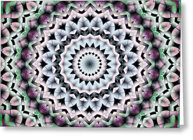 Mandala 40 Greeting Card by Terry Reynoldson