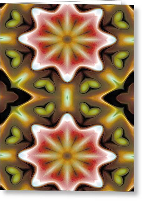 Mathematical Greeting Cards - Mandala 93 for iPhone Double Greeting Card by Terry Reynoldson