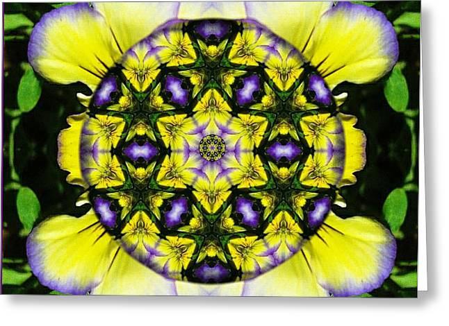 Mandala Healing Greeting Card by Sarah  Niebank