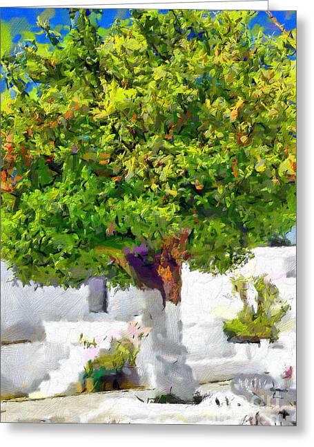 Mandarine Tree Painting Greeting Card by Magomed Magomedagaev