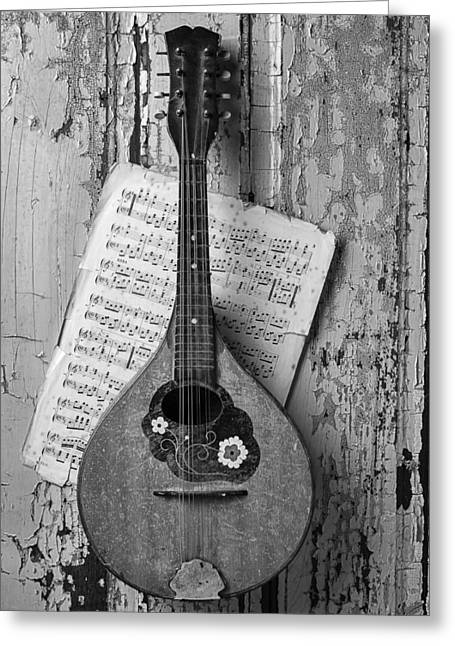 Mandolin Greeting Cards - Mandolin In Black And White Greeting Card by Garry Gay