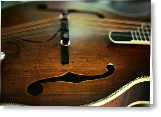 Mandolin Greeting Cards - Mandolin Greeting Card by Ty Helbach