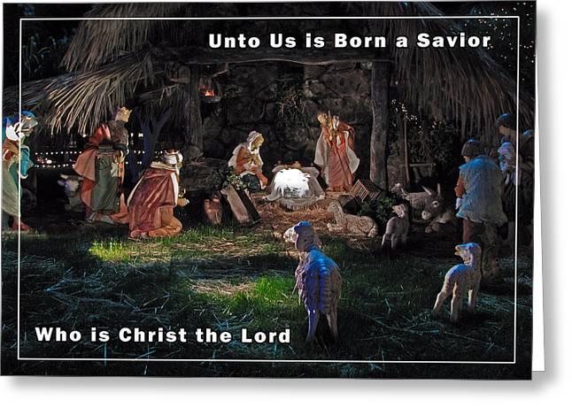 Manger Christmas Card Greeting Card by John Haldane