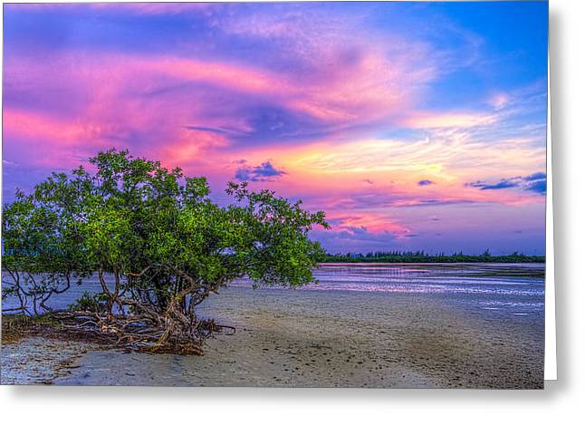 Thunder Cloud Greeting Cards - Mangrove by the Bay Greeting Card by Marvin Spates