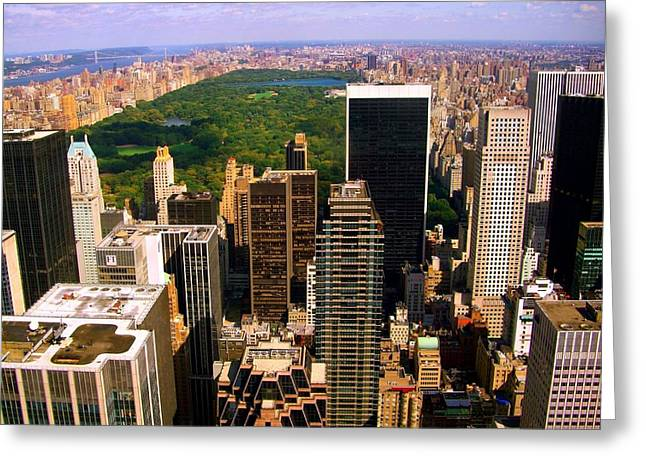 Amazing Gardens Greeting Cards - Manhattan and Central Park Greeting Card by Monique Wegmueller