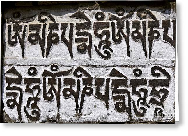 Buddhist Region Greeting Cards - Mani stone in the Everest Region of Nepal Greeting Card by Robert Preston